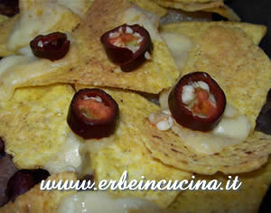 Nachos with Pasilla Bajio