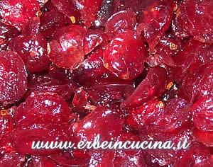 Salsa di cranberries
