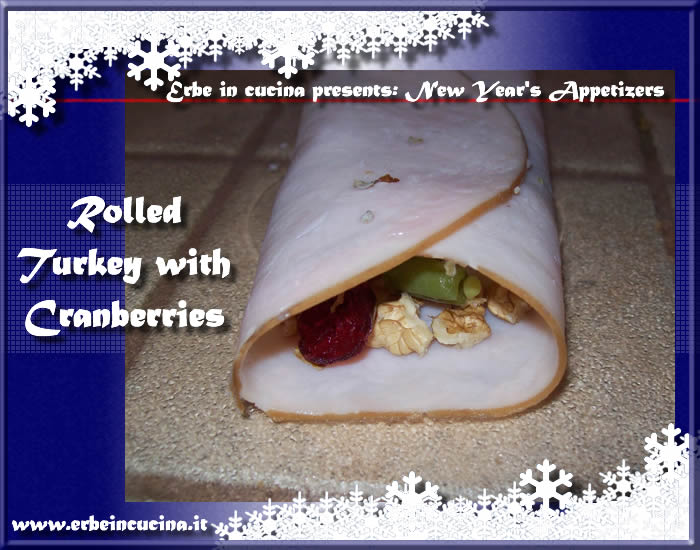 Rolled turkey with cranberries